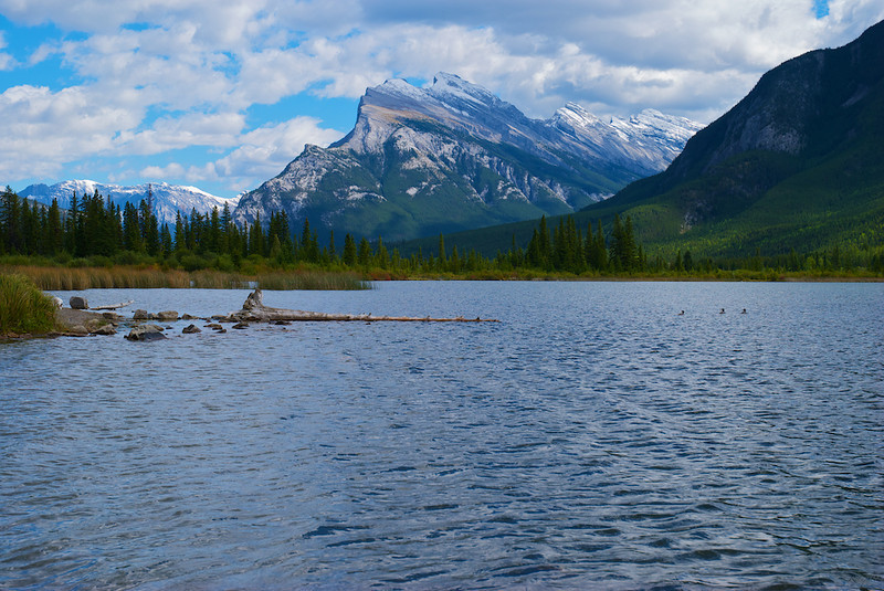 2nd Vermillion Lake in the foreground and Mt.Rundle behind it.