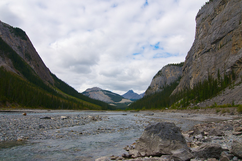 Bow River Valley, looking north.