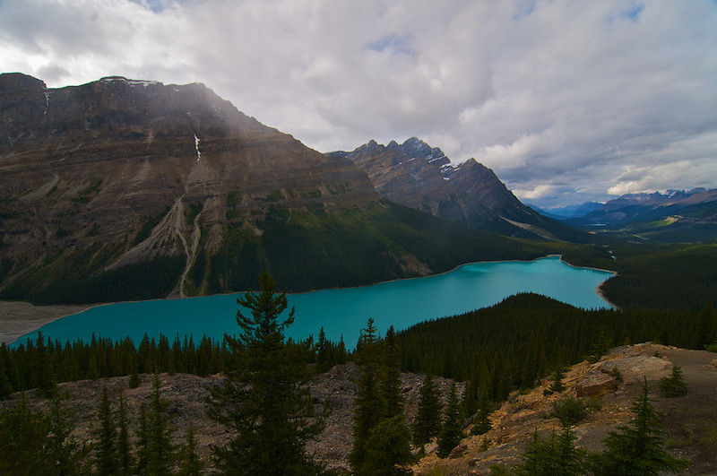 Peyto Lake, taken from Bow Summit viewpoint.